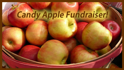 How about a candy apple fundraiser?