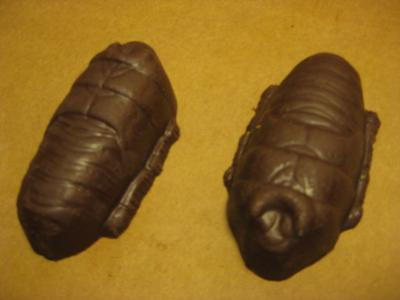 Chocolate Cockroach Caboodle