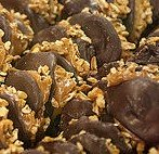 chocolate nutty clusters