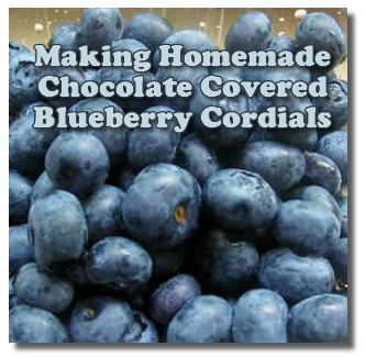 Making Chocolate Covered Blueberries